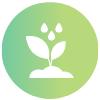 growing community foundation